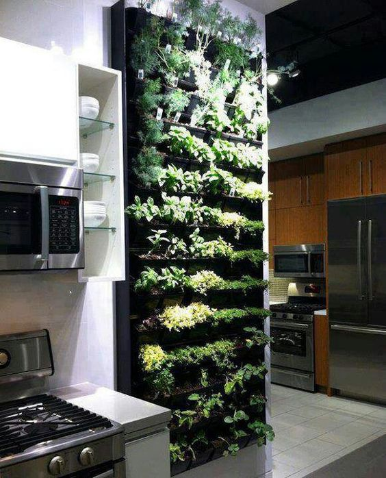 Plant wall