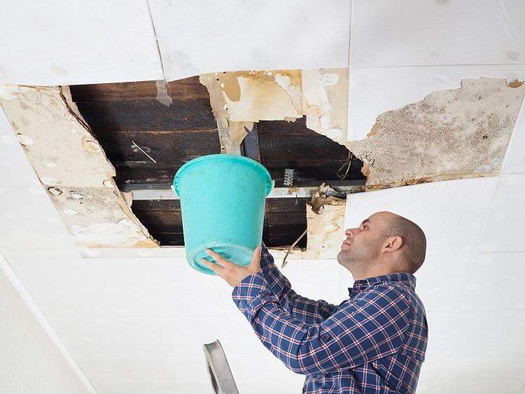 Man holding a bucket under a leaking roof